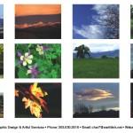 2011 Calendar Photos
